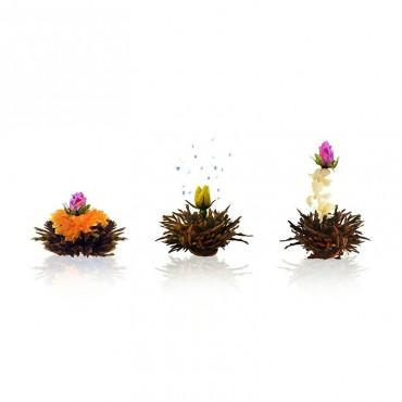 Creano virágzó tea doboz, 6...