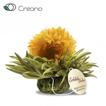 """Creano """"Vanilia ragyogás"""" csésze méretű virágzó fehér teagolyó"""