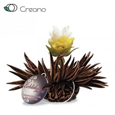 "Creano ""Bergamott gyöngy""..."