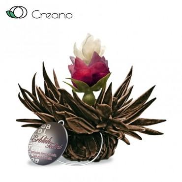 """Creano """"Cseresznye gyöngy""""..."""