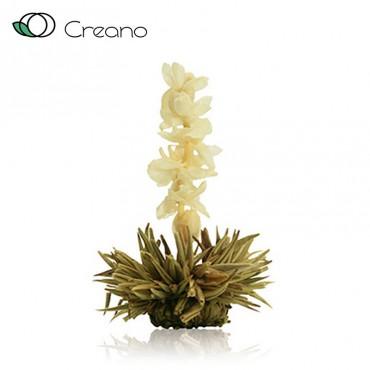 """Creano """"Tiszta szerelem"""" virágzó fehér teagolyó"""