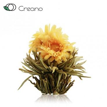 """Creano """"Napforduló"""" virágzó fehér teagolyó"""
